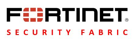 Fortinet 1